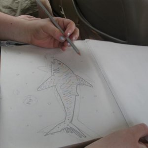 My sister coloring my shark I drew