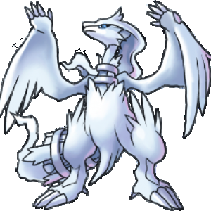Reshiram- this Pokemon is not in games yet. Looks like something in yu-gi-oh.