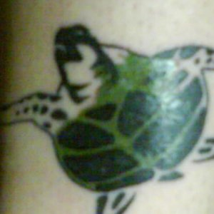 My recent tattoo on my leg...LOL..yes i love turtles that much